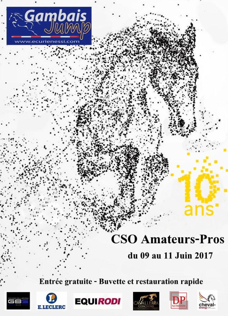 Affiche du 09 au 11 Juin 2017