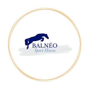 Balnéo Sport Horses